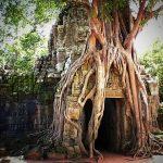 Voyager au Cambodge et découvrir ses temples