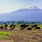 Le Kenya, une contrée propice à la découverte et l'aventure