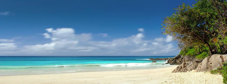 Paysage naturel aux Seychelles
